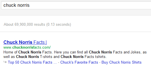 Chuck Norris Search Query