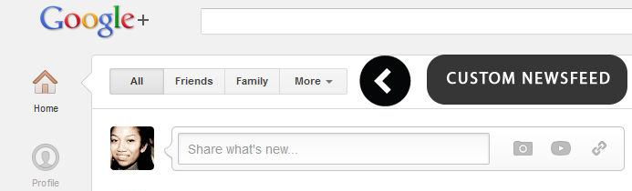 Google Plus Custom Newsfeed