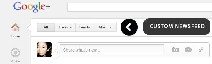 Google Plus Custom Newsfeed